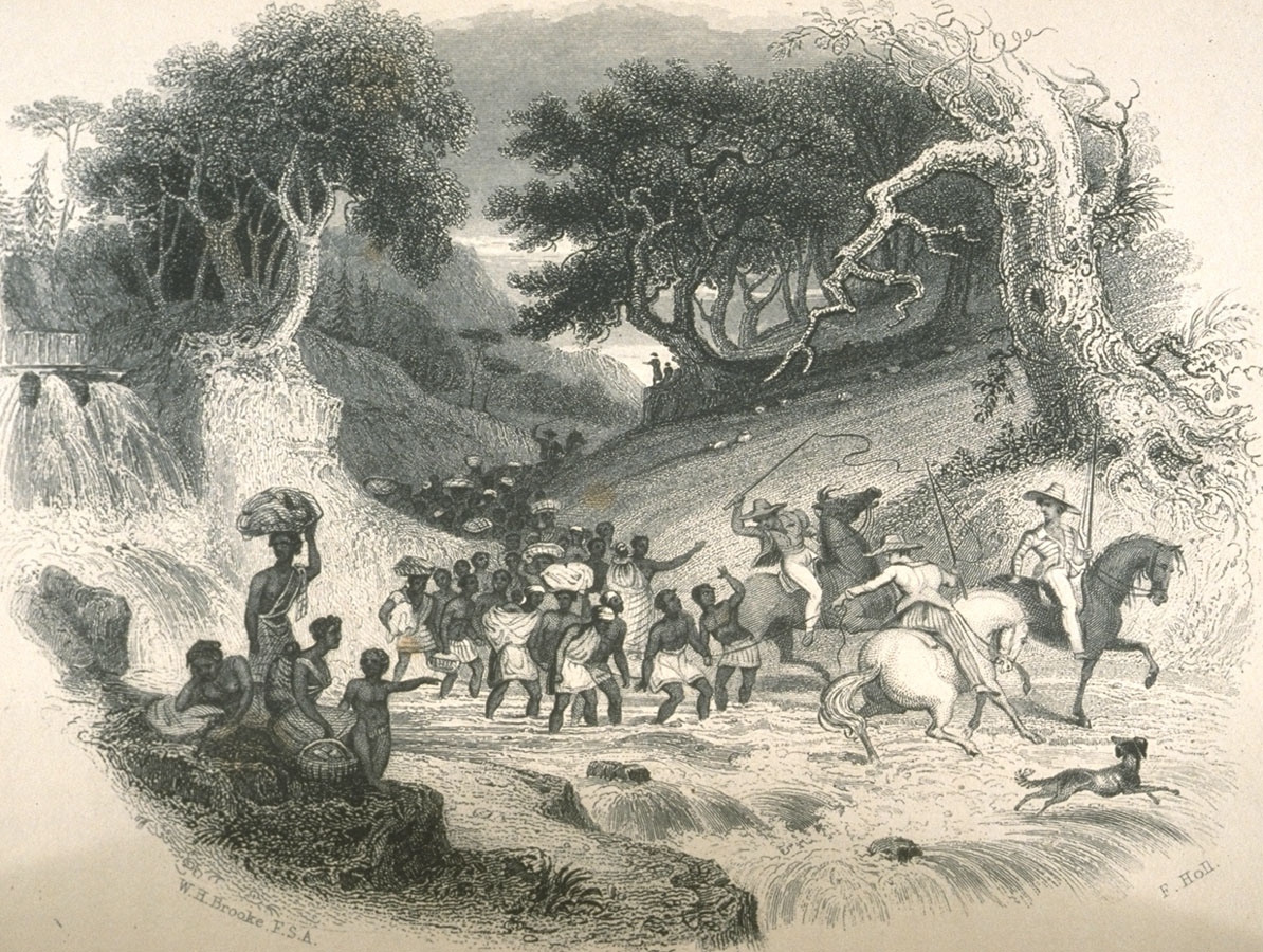 a history of the middle passage in africa Middle passage even before african slaves arrived on the shores of virginia in 1619, the slave trade figured significantly in the economy of the atlantic nations established primarily by.
